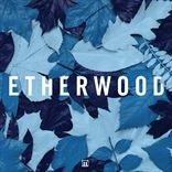 Etherwood - Blue Leaves (2015)